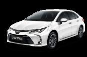corolla-icon Toyota Vios